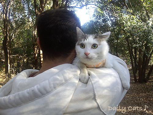 2012_0103_6.jpg